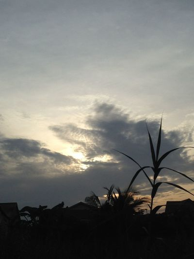 Rise and shine Mr. Sun Morning Sunrise Nature Sky Clouds Greatness Of God