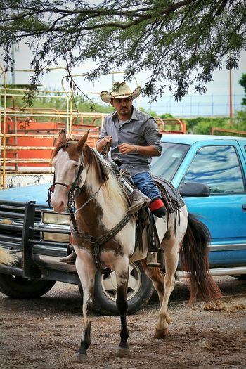 Chance Encounters Transportation Sitting Mode Of Transport Riding Horse Horsedrawn Cowboy Cowboy Hat Lifestyles Mexican Culture Mammal Mexicanphotographer Mexican Scene Domestic Animals Hobby Passion Prostheticleg Prosthetics Prosthesis Mexico Tamaulipas