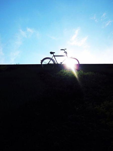 Enjoying The Sun Sunlight Mexico Bycicle