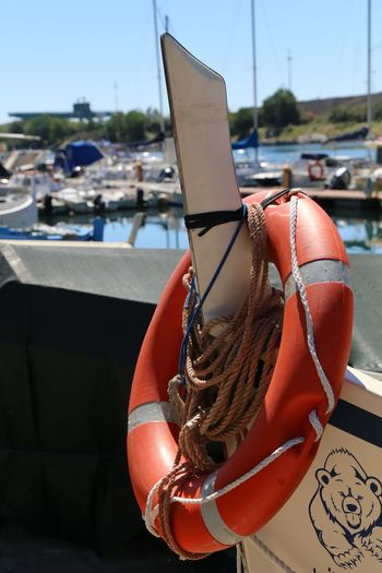 EyeEm Selects Nautical Vessel Buoy Fishing Industry Harbor No People Fishing Fishing Tackle Water Moored Red Business Finance And Industry Sea Day Outdoors Fishing Net Close-up