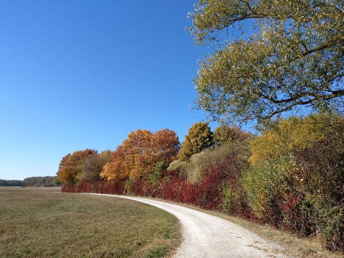 Crailsheim Freibad Herbst Herbststimmung Colors Colors Of Autumn Autumn Autumn colors Agriculture Cultivated Land Farmland