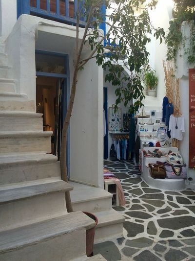 Alleys Alleyway The Architect - 2016 EyeEm Awards Architecture Building Building Exterior Day Exterior Façade Greece Greek Islands Island Life Island Streets Meditterranean Narrow Street Naxos Outdoors Pavedstreet Residential District Sokakia Town Traditional Shops Αιγαιο νησιά Σοκάκια