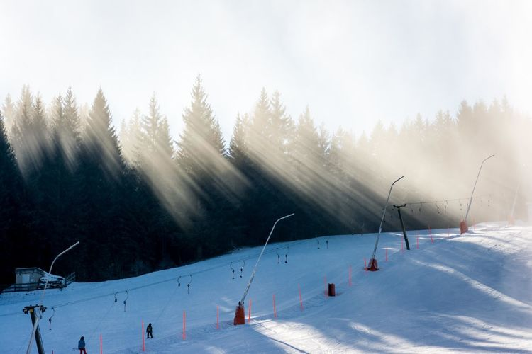 Fantastic light play along the ski run. Cold Temperature Day Frozen Landscape Outdoors Ray Of Light Rays Of Light Season  Snow Snow Crystals Snow Fog Weather White Winter Schattenspiel  Ski Run Skiing Light And Shadow Sun Beams Sunlight Shadowplay