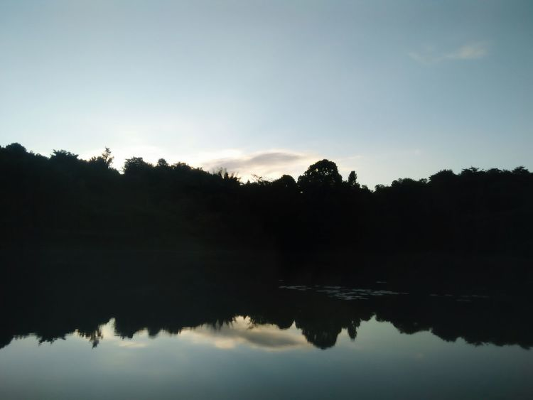Reflection Lake Tree Water Landscape Nature Tranquility Dawn Sky Outdoors Scenics No People Fog Beauty In Nature Day