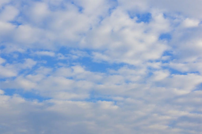 White altocumulus cloud in morning on the blue sky as background. Atmosphere Beautiful Cloud Heaven High Peace Scenic Weather Air Altocumulus Background Blue Climate Cloudscape Cumulus Day Daylight Meteorology Moisture Nature Nebulosity Outdoor Season  Sky White