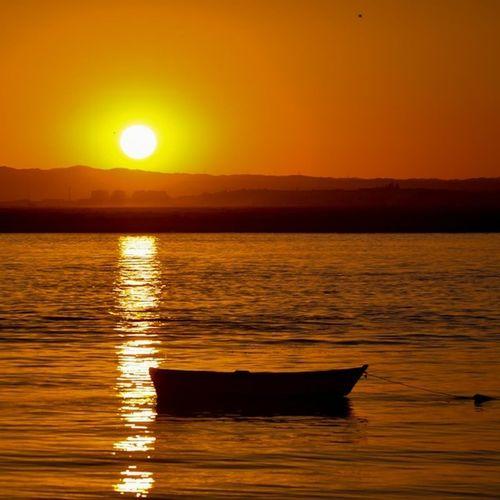 Sunset without filter... Good night EyeEm Best Shots EyeEm Nature Lover EyeEm Best Shots - Sunsets + Sunrise EyeEm Best Shots - Landscape