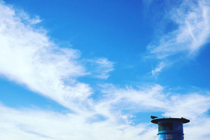 Nature Sea And Sky Korea Photos Cloud - Sky High Angle View No People Wolmido Wolmi Isaland Incheon Korea Seagull