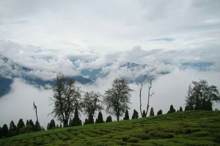 Nature Relaxing India