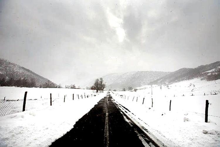 Snow covered landscape
