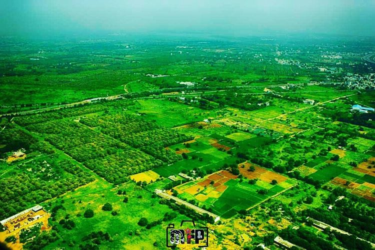 Hyderabad greenery Green Color Agriculture Aerial View Field Rural SceneAkashdahustler Millfingaproductions Akashdahustla Hyderabaddiaries Hyderabadairport Beauty In Nature Landscape Scenics Patchwork Landscape Growth Tranquil Scene Nature Backgrounds Outdoors No People Sky Day Hyderabad,India Hyderabadcity