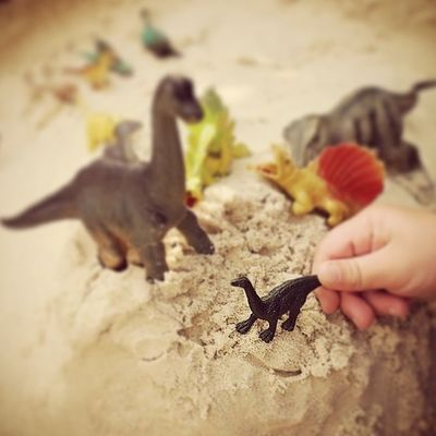 I like to start the day EARLY with a good old game of daddy and baby dinosaur. Little_munchkin_patch_Childcare