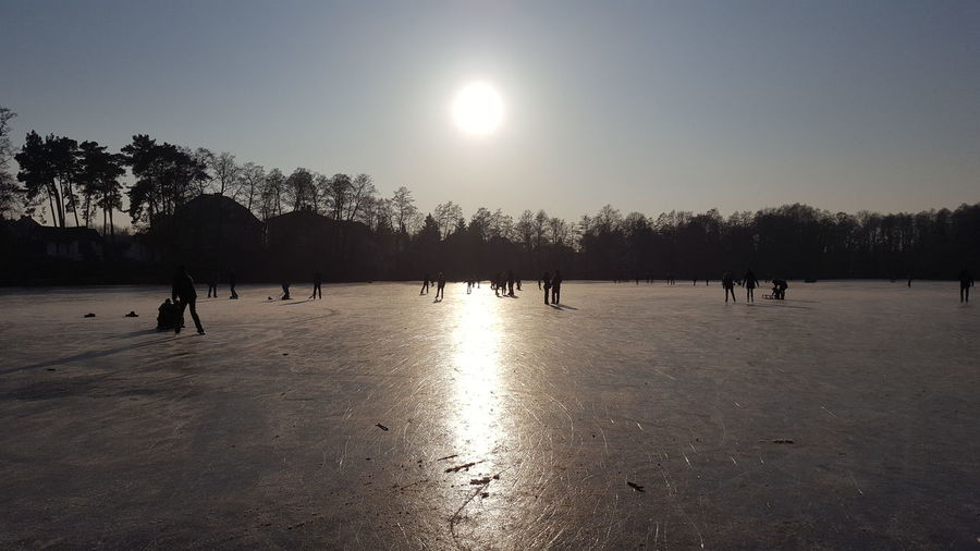 Beautiful Brandenburg Winter Frozen Nature Iceskating Sun Sunlight Landscape