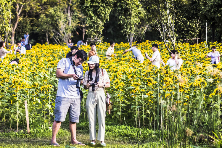 Rear view of people standing by flowering plants on field