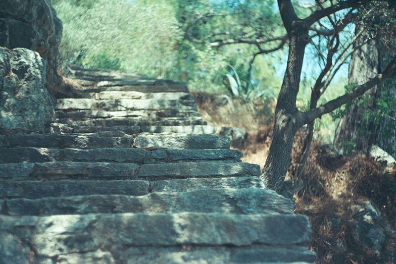 Analog Camera Filmisnotdead Analog Photography Muğla Akyaka Stairs Steps Analog Zenit-ET