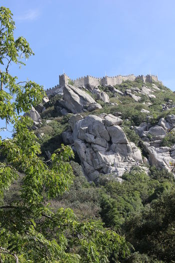 Overview of the Castle of the Moors, Sintra Architecture Castle Moors Castle Nature Portugal Sintra Beauty In Nature Castle Of The Moors Day Fortress Fortress Wall Moor  Nature No People Outdoors Perched Perched On Top Rock Rock - Object Rock Formation Sky Solid