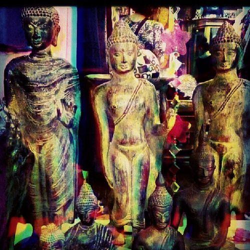 Psychodelic Trinity! Alteredstates Psychodelia
