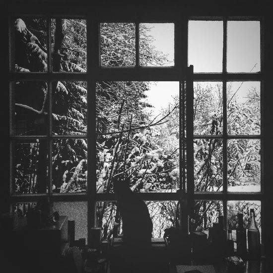 Blackandwhite Eye4photography  AMPt - Shoot Or Die The View From My Window