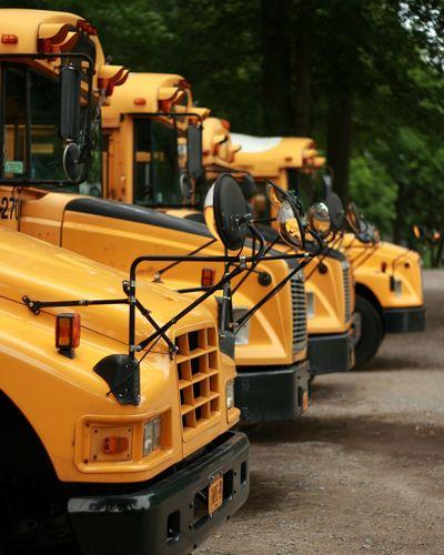Schoolbus School Bus Yellow Yellow Color Dof Dof_brilliance Depth Of Field Depth Of Focus
