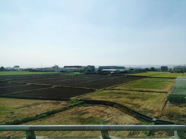 Havest Agriculture Field Rural Scene Landscape Nature Outdoors Day Sky Beauty In Nature