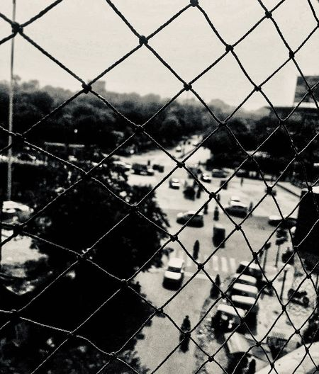 Road Junction View through Net Cars Traffic Road Junction Net Road Fence Chainlink Fence Boundary Security Barrier Protection Nature Outdoors Sport Full Frame Tree Pattern Safety Backgrounds Metal No People Sky Day Water Playing Field
