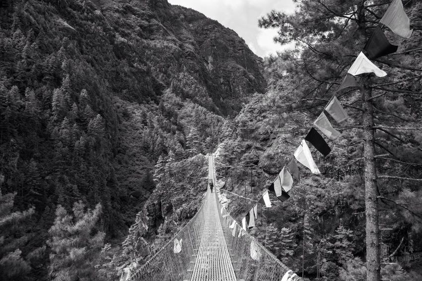 Crossing a 100m bridge with cows behind you to get to Namche Bazaar (3750m) Bridge Black And White EyeEm Nature Lover Travel Photography Landscapes With WhiteWall Great Outdoors With Adobe The Great Outdoors With Adobe The Great Outdoors - 2016 EyeEm Awards Fine Art Photography