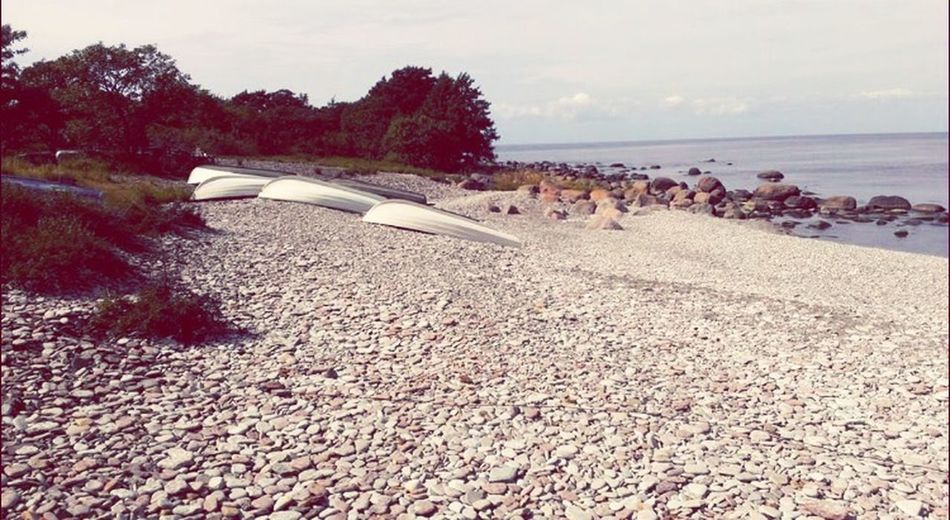 Sommar Taking Photos Båt