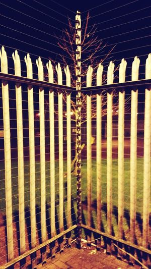 Evade with me! Tree Electric Fence Inaccessible Interdiction Jail Jailbreak Jailtime Fine Art Photography