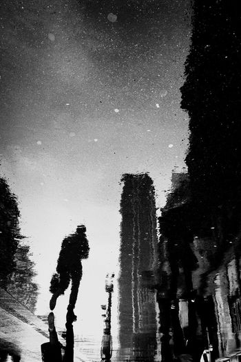 Silhouette people standing by trees against clear sky at night