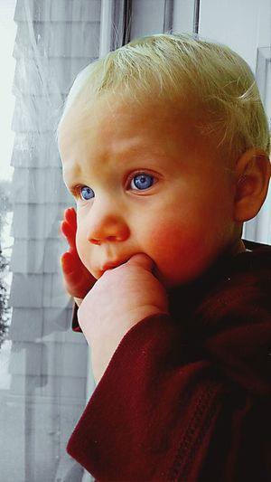 Enjoying Life Baby Boy Handsome Handsome Boy Blue Eyes Beautiful Blondie Adorable Adorable Kids