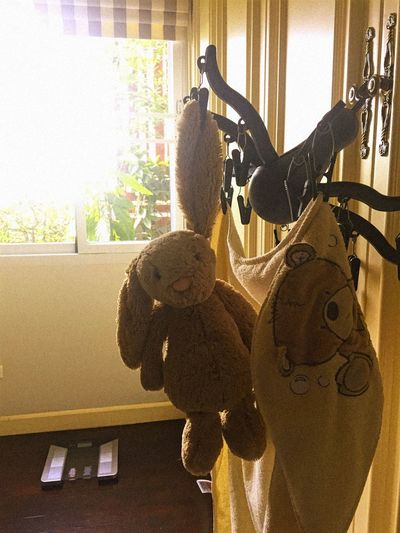 Bunny 🐰 Doll Hanging Little Rabbit Animal Representation Bunny  Childhood Close-up Day Dry Drying Drying Doll Hang In There Home Interior Indoors  No People Rabbit Rabbit Doll Stuffed Toy Teddy Bear Toy The Week On EyeEm