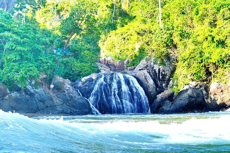 When waterfall met the beach, you're not only can see that,you can track to high point of waterfall and enjoy the pure water there with viewing the dancing of wave.. You also can enjoy seafood that people get from fishing there.. This is only in Indonesia, in east Java. If you wanna come there please contact +62 85 755 06 8004 Beach Beachside Waterfall Vscocam Livefolkindonesia Exploreindonesia Wonderfulindonesia Indotravellers Getlost Wonderful_places Wonderful Indonesia Wonderful_location Wanderlust Wanderer Bestvacations Eyeembest