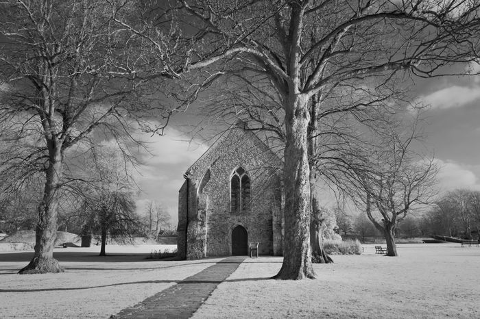 Tree Bare Tree No People Architecture Building Exterior Outdoors Built Structure Branch Spirituality Religion Nature Sky Day Infrared Infrared Photography
