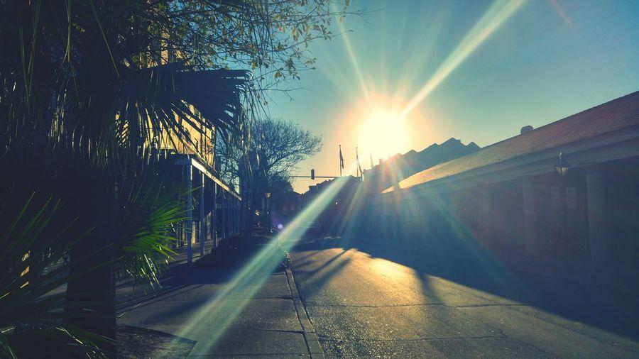 Sun shining through car on sunny day