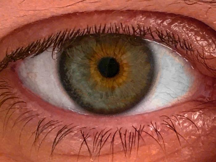 EyeEm Best Shots EyeEmNewHere Human Eyes Body Part My Eye My Eyes Iris Looking Look Eye Lashes Green Eyes Eye Optic Optical Human Eye Eyelash Sensory Perception Eyesight Eyeball Human Body Part Iris - Eye Close-up One Person Real People People