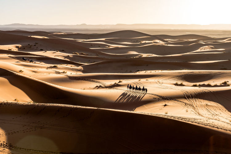Scenics - Nature Desert Landscape Tranquil Scene Sand Dune Environment Arid Climate Land Tranquility Beauty In Nature Nature Sky Non-urban Scene Climate Day Sand No People Sunlight Travel Water Outdoors Atmospheric