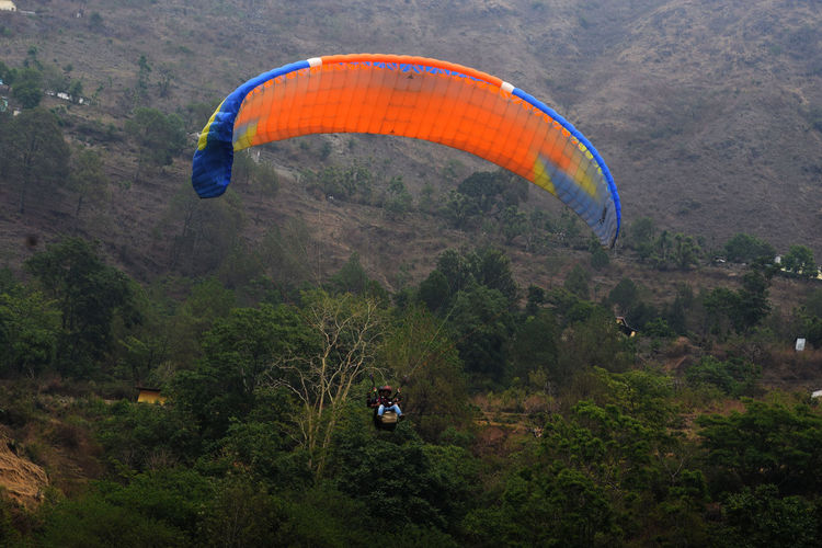 People paragliding against trees on mountain