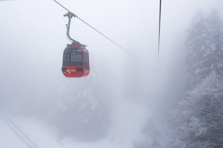 Beauty In Nature Cold Temperature Fog Mt. Pilatus Overhead Cable Car Scenics Snow Switzerland Vacations Winter