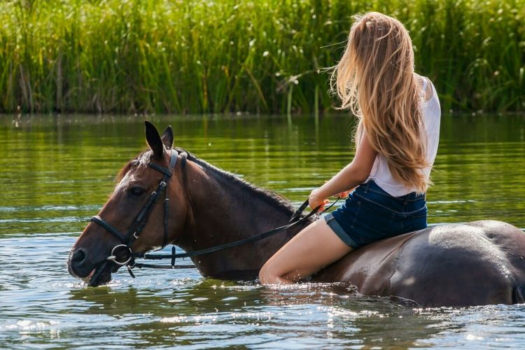 Woman on horse in lake