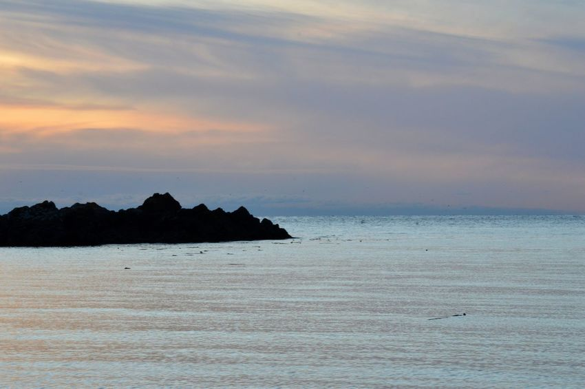 The endless beauty of Fidalgo Island. Ocean Sunset Lovers Rock - Object PNW Anacortes Beach Nature Tranquility Water Blue Beauty In Nature Sky No People Outdoors Sunset Scenics Horizon Over Water