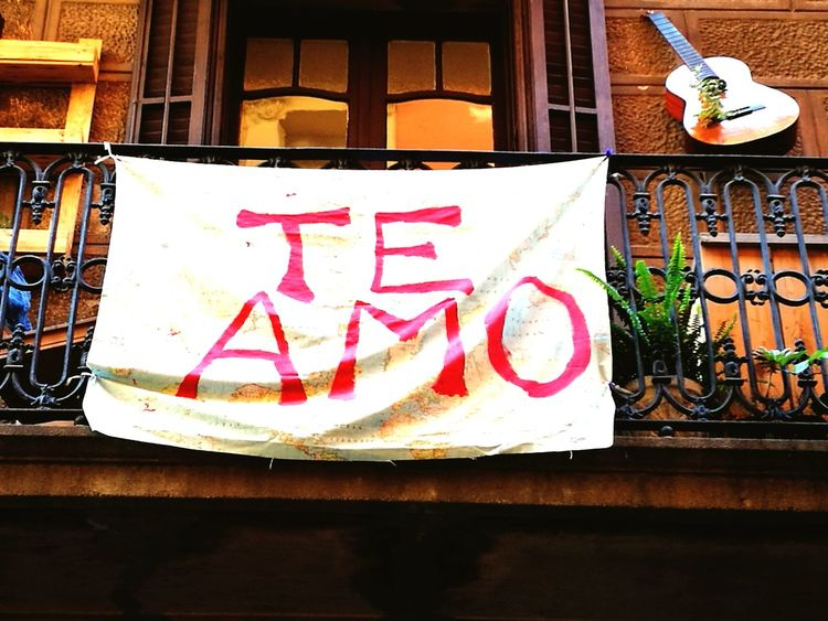 Love Earth Amor A La Tierra Paz ✌ Peace Guitar Balcon