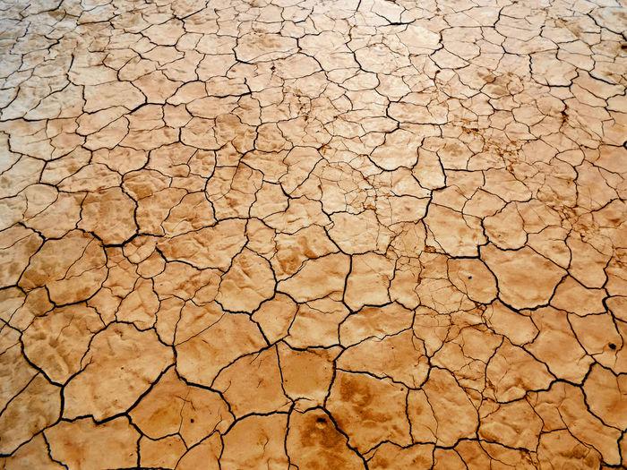 need rain. Desert Las Vegas What Happens In Vegas. Desert Life EyeEm Best Shots Global Warming Arid Climate Desert Backgrounds Clay Bad Condition Summer Textured  Full Frame Drought Dried Arid Extreme Weather Heat Arid Landscape