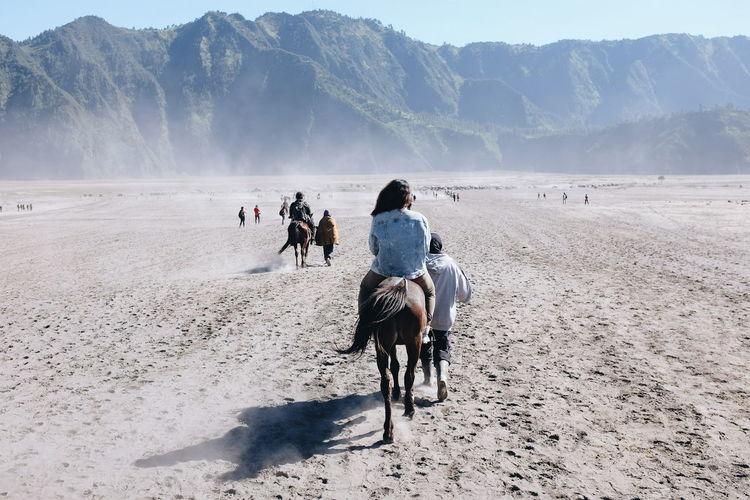 Rear view of people riding horses at bromo-tengger-semeru national park