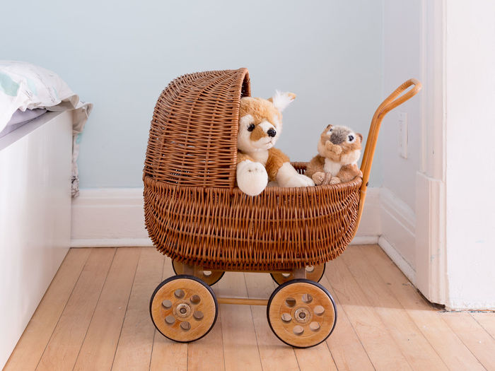 Stuffed toy in basket at home