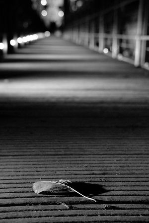 Outdoors No People Close-up Fujifilm_xseries Mystyle Fuji Hanging Out Taking Photos Blac&white  Night CityWalk City At Night Cityexplorer