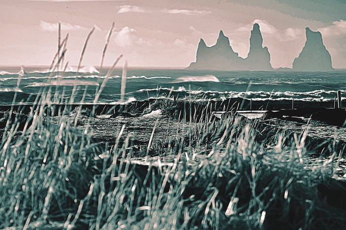 Black Sand Beach in Iceland Nature Sea Beauty In Nature Landscape Ice Tranquility Tranquil Scene Scenics Winter Snow Sky No People Outdoors Cold Temperature Day Grass The Traveler - 2018 EyeEm Awards The Great Outdoors - 2018 EyeEm Awards Summer Road Tripping