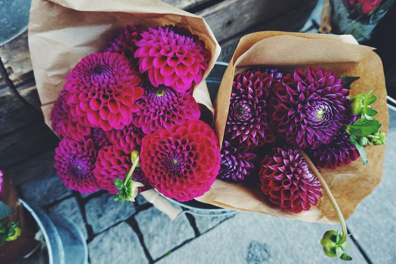 High Angle View Of Dahlia Flowers In Paper Bags At Flower Shop