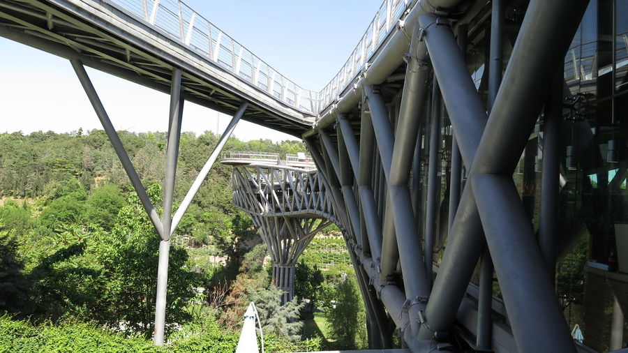 Tehran Nature Bridge Bridge - Man Made Structure Built Structure Outdoors No People Day Architecture Sky Tree