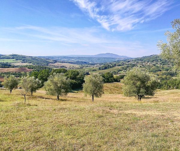 My Year My View Umbria Italy Fields Panorama