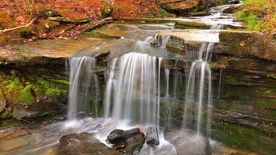 Falls Water Waterfall Scenics - Nature Beauty In Nature Motion Long Exposure Flowing Water Rock Rock - Object Solid Nature Environment Flowing Forest Plant No People Tree Outdoors Splashing Land