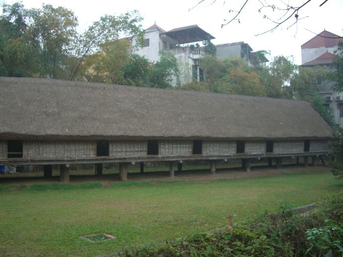 Traditional Vietnamese Long House on Stilts Building Exterior Built Structure Cpomposition Culture Day Ethnic Ethnology Museum Exterior Façade Grass Grey Sky Hanoi House Lawn Museum No People Outdoor Photography Outdoors Residential Building Residential Structure Thatched Roof Tourist Attraction  Traditional Trees Vietnam